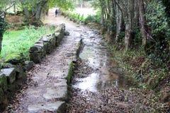 Rain path Royalty Free Stock Images