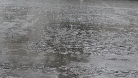 Rain on Pavement Plaza. Heavy summer rain on paved plaza place. Sound included stock footage
