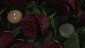 Rain pours candles and red roses sorrow for dead slow motion stock footage video stock footage
