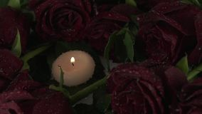 Rain pours candles and red roses sorrow for dead slow motion stock footage video. Rain pours candles and red roses sorrow for the dead slow motion stock footage stock video footage
