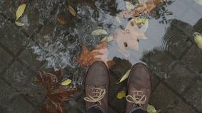 Rain and puddles, walking in leather shoes. Top view on female or male heavy duty hard leather shoes or boots standing in big puddle after autumn rain, with stock video