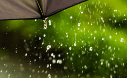 Rain Ra!n... Royalty Free Stock Image