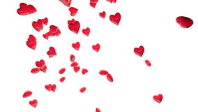 Rain of red hearts over white backgrounds. 3D heart shapes falling. Valentine's day, love stock footage