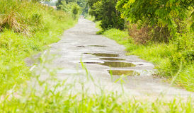Rain on the road background. Royalty Free Stock Image
