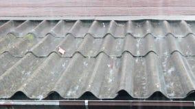 Rain roof stock video footage