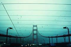 Rain in San Francisco royalty free stock image
