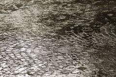 Rain on sett paving Royalty Free Stock Photography