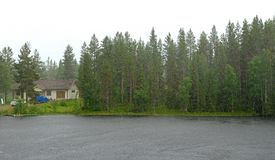 Rain in small forest lake. Northern Finland, Lapland Royalty Free Stock Photo