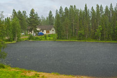Rain on a small lake in the woods. Stock Photos