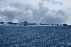 Rain on the sown field Stock Photo