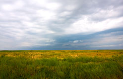 Before rain in steppe Royalty Free Stock Images