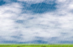 Rain storm backgrounds in cloudy weather. With green grass Royalty Free Stock Photos