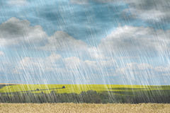 Rain storm in cloudy weather on landscape nature backgrounds Stock Image