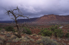 Before a rain storm in Utah desert Stock Photo