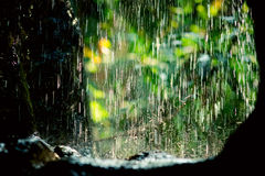 Rain streams Royalty Free Stock Images