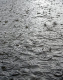 Rain on the street in detail. Macro Stock Images