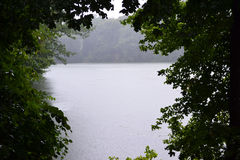 Rain. Strong rain on a forest lake, thundershower by a canicular day Stock Photo