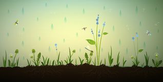 Rain in the summer garden, Stock Photography