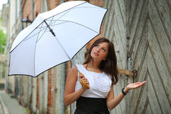 Rain in summer Royalty Free Stock Photography