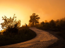 Rain and sun. Wet road on a sunset on a rainy day Royalty Free Stock Images