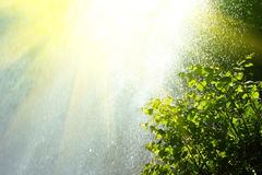 Rain and sun Royalty Free Stock Image