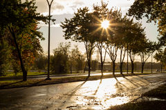 Rain and sun at fall. On street royalty free stock photo