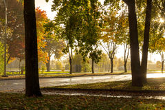 Rain and sun at fall. On street royalty free stock images