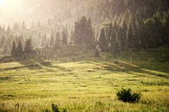 Rain and sunlight in summer mountains Royalty Free Stock Image