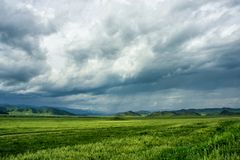 Green field under a stormy sky. Rain and sunny spots against the backdrop of the mountains. Mountain Altai in the summer Royalty Free Stock Photo