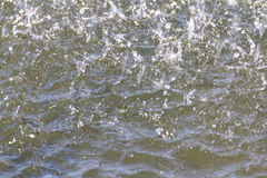 Rain on the surface of water Royalty Free Stock Image