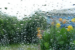 Rain on the glass Stock Images