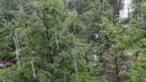 Rain in urban landscape. In summer day stock footage