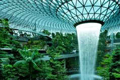Rain Vortex, the world`s tallest indoor waterfall at Jewel Changi Airport. Green forest in the mall and skytrain. Iconic landmark royalty free stock images