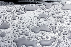 Rain water Stock Photography