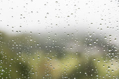 Rain water droplets on glass window with scenic greenery view Stock Image