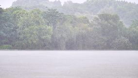 Rain water drops falling into lake in summer, slow motion in 180 fps, heavy rain fall background.  stock footage