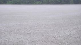Rain water drops falling into lake in summer, slow motion in 180 fps, heavy rain fall background.  stock video