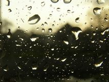Rain. Water drops on glass after rain Royalty Free Stock Image