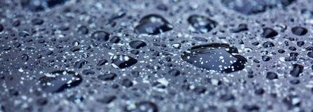 Rain water drops. Stock Photos