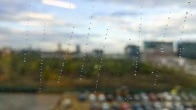 Rain water drops on a window. Rainy day in corporate park . Picure with blured bsckground Royalty Free Stock Image