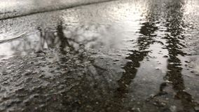 Rain Water Puddle stock footage