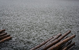 Rain water texture and Bamboo Royalty Free Stock Photo