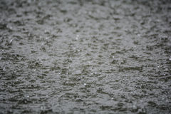 Rain water texture Stock Images