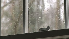 Rain window 1 4 stock video footage
