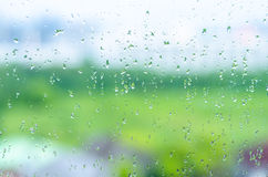 Rain on the window. In the morning Stock Photo