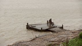 Rain, winds,  mekong, cambodia. Person waiting ferry boat under rain at landing stage. Mekong, Cambodia stock video footage
