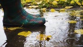 Rainboots på pölen arkivfilmer