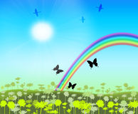 Rainbow. On floral meadow with flitting butterfly Royalty Free Stock Image
