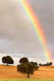 Rainbow. Pretty rainbow in a field with trees Royalty Free Stock Photography
