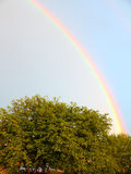 Rainbow. Powerful rainbow shining over trees in afternoon sun Royalty Free Stock Photography